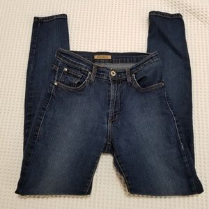 James Jeans 28 Jeans Stretch High Class Edition